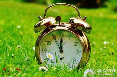 15 шагов к управлению временем