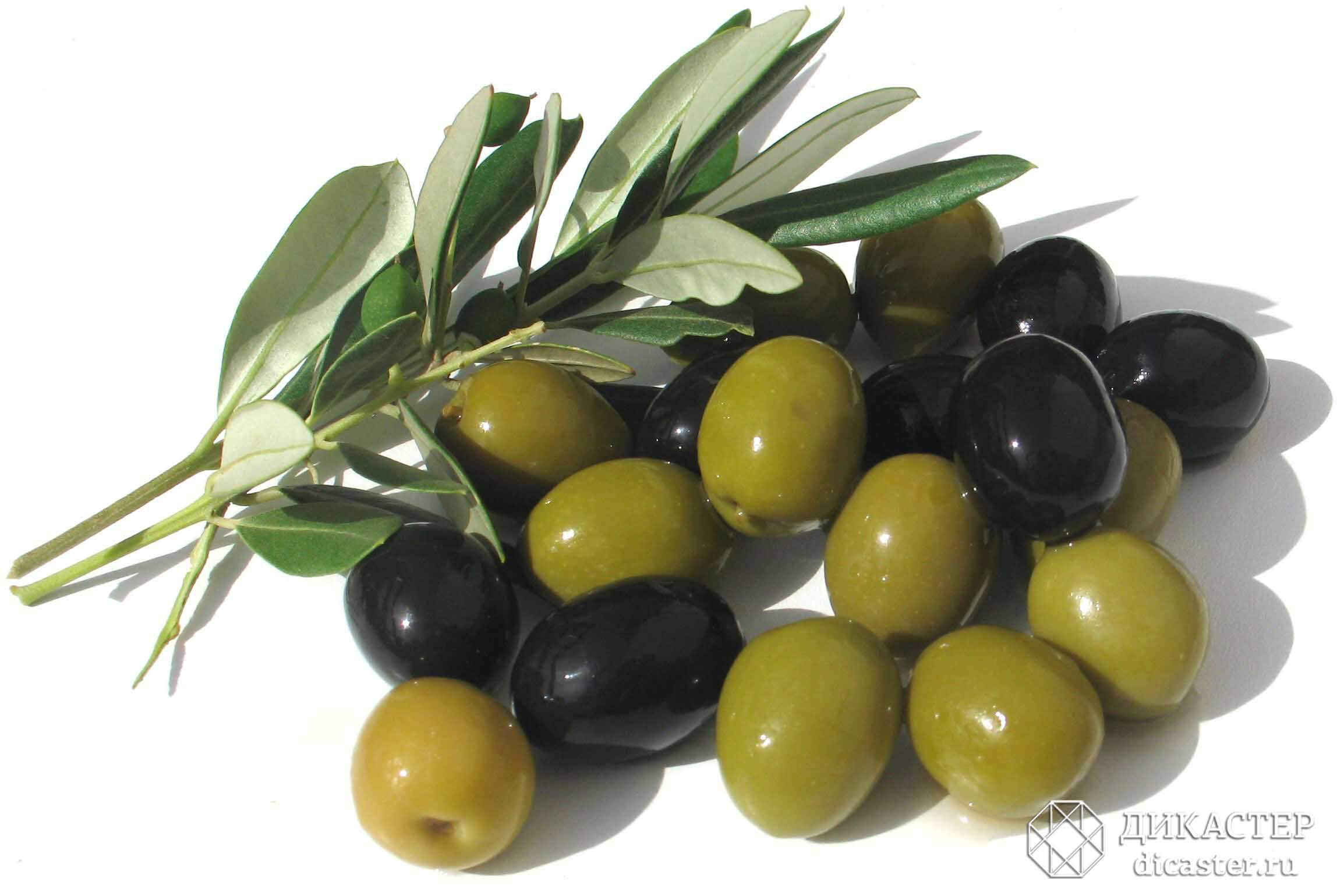olives-770968_1280